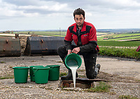 Goat farmer pours thousands of litres of milk down the drain because of the coronavirus