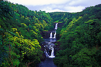 Beautiful Umauma Falls along the east coast of the Big Isle just north of Hilo.