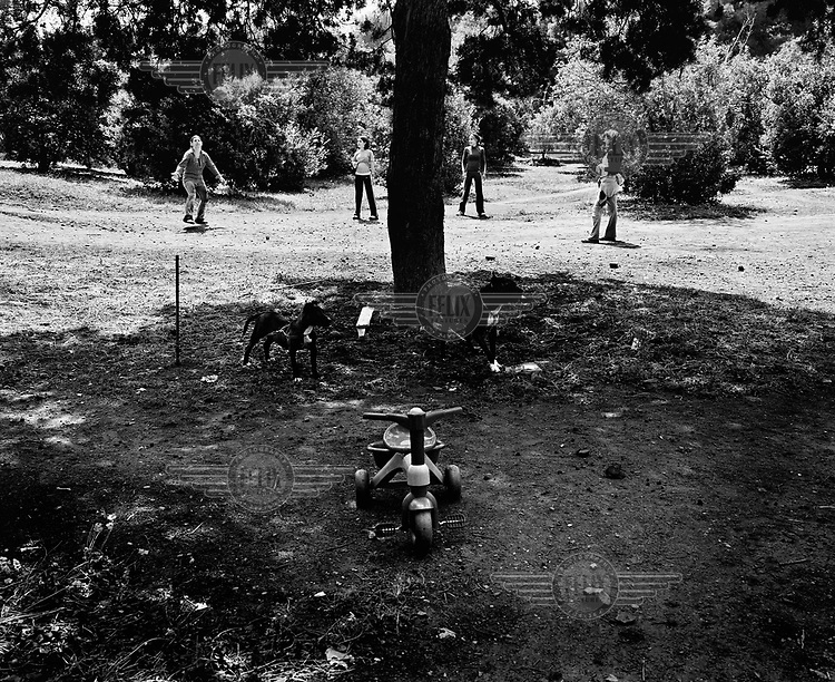 Two dogs chained to a tree while behind them a group of girls play volleyball during an Easter Monday picnic at 'Favorita Park'. /Felix Features