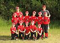 2014 Chico Baseball (Team 8)