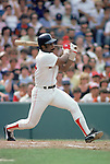 UNDATED:  Jim Rice #14 of the Boston Red Sox swings during a game circa the 1974-89 season.   (Photo by Rich Pilling)