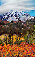 Mount Ranier in Autumn II