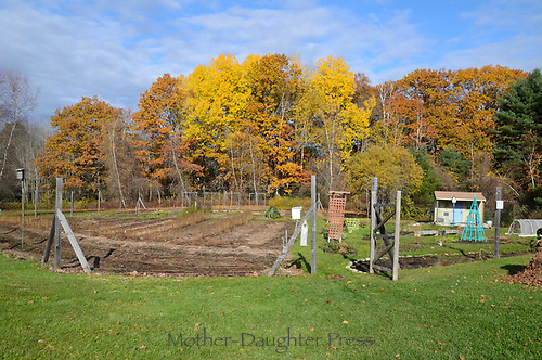 Putting the garden to bed, Yarmouth Community Garden, Maine