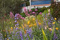 Amy Stewart's front yard no lawn flowering perennial garden