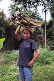 INDONESIA, Flores, portrait of a young girl carrying wood on her head in Dintor village