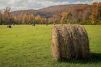 A hay field in the Erbie area on the Buffalo National River in Arkansas.