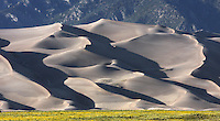 Large transverse dunes along the west flank of the Sangre de Cristo Range.  The largest of the dunes seen here is about 750 ft. high. Great Sand Dunes National Park. Alamosa Co., Colo.