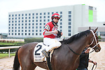 March 14, 2020: Night Ops (2) with jockey Joseph Talamo aboard after winning the Essex Handicap at Oaklawn Racing Casino Resort in Hot Springs, Arkansas on March 14, 2020. Justin Manning/Eclipse Sportswire/CSM
