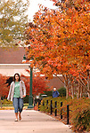 Class change, Fall colors. Photo by Nathan Latil/Ole Miss Communications