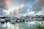 Port Douglas Marina.  Port Douglas, Queensland, Australia