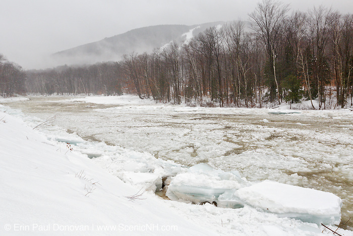 Ice flowing down the East Branch of the Pemigewasset River in the area of the Lincoln levee in Lincoln, New Hampshire during a rainy and snowy winter day in January 2014.