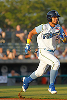Myrtle Beach Pelicans catcher Jhonny Pereda (15) at bat during a game against the Salem Red Sox at Ticketreturn.com Field at Pelicans Ballpark on June 8, 2018 in Myrtle Beach, South Carolina. Myrtle Beach defeated Salem 5-4. (Robert Gurganus/Four Seam Images)