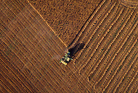 Aerial view of combine cutting a wheat field