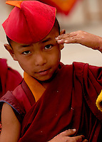 Young Student Buddhist  Monk in Sikkim India