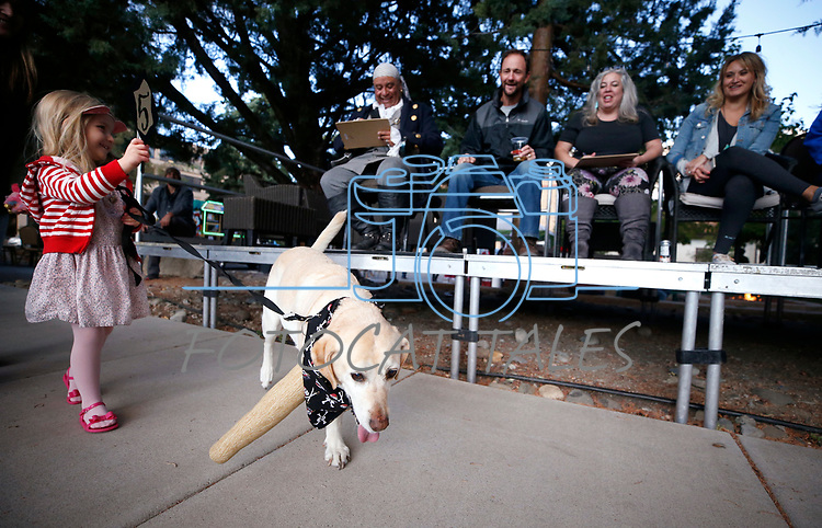 Jules Lawson, 4, and her dog Butters walk past the judges at the Scallywaggers Pirate Pup Parade at the Brewery Arts Center, in Carson City, Nev., on Wednesday, Sept. 18, 2019.<br />Photo by Cathleen Allison/Nevada Momentum
