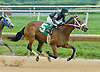 Curlamorous winning at Delaware Park on 9/5/12