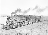 3/4 fireman side view of K-37 #490 double-heading with #491 at Ignacio.<br /> D&amp;RGW  Ignacio, CO  Taken by Payne, Andy M. - 8/19/1954