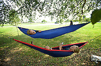 NWA Democrat-Gazette/BEN GOFF @NWABENGOFF<br /> Joshua Smith (top) and twin brother Caleb Smith of Bella Vista relax in their hammocks on Thursday Aug. 27, 2015 at Memorial Park in Bentonville while waiting for the Melvin Ford Aquatic Center to open.