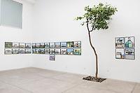 """Arquitectura Libre at Adam Wisemans exhibition """"Lo que sucede"""" at the Patricia Conde Gallery in San Miguel Chapultepec, Mexico"""