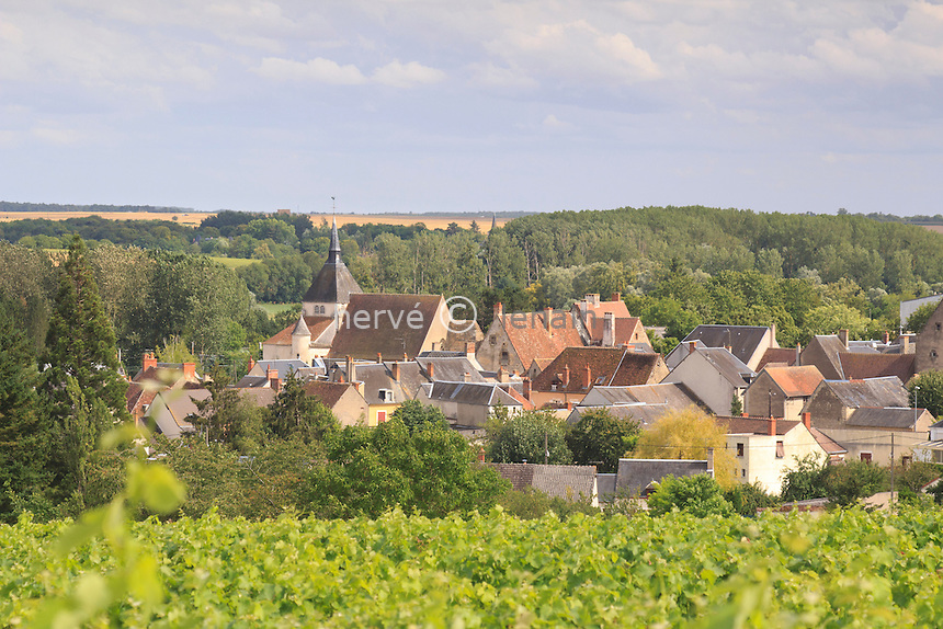 France, Indre (36), Reuilly, vue du village et de son vignoble (AOC Reuilly) // France, Indre, Reuilly, the village and the vineyard