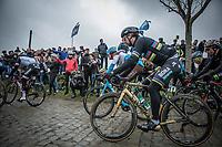 World Champion Peter Sagan (SVK/Bora Hansgrohe) riding the cobbles of the Paddestraat. <br /> <br /> 102nd Ronde van Vlaanderen 2018 (1.UWT)<br /> Antwerpen - Oudenaarde (BEL): 265km