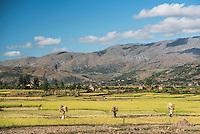Ambuhimahasua, Madagascar