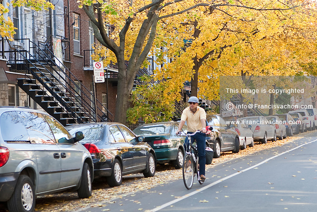 A cyclist rides on the bike path of a residential street in the Mile End neighbourhood of the Plateau-Mont-Royal borough in Montreal Friday October 26, 2012. Mile End is part of the Plateau-Mont-Royal borough in terms of Montreal's municipal politics, but more multicultural with a mix of Anglophone and Francophone populations.