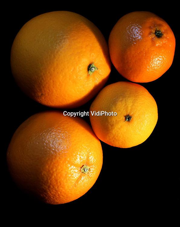 Foto VidiPhoto<br /> <br /> VALBURG - Sinaasappels en mandarijnen.