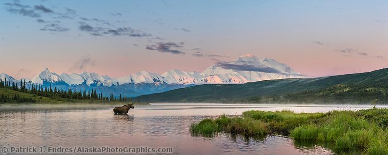 Sun rises on the summit of Denali, reflected in Wonder Lake, Denali National Park, Alaska.