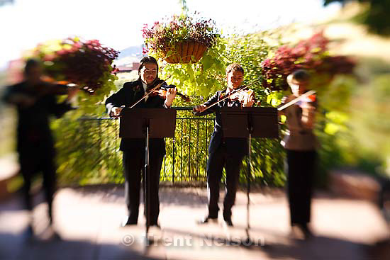 Salt Lake City - Chris Detrick, Ashley Franscell wedding at Red Butte Garden Saturday September 13, 2008.