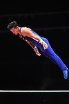 Gymnastics World Championships Mens Qualifications  26.10.15. USA in action. Alexander Naddour