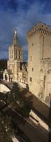 Europe/France/Provence-Alpes-Côte- d'Azur/84/Vaucluse/Avignon: le Palais des Papes et la Cathedrale N-D-des-Doms