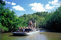 USA, Florida, Everglades: mit dem Airboat durch die Suempfe | USA, Florida, Everglades: airboat ride