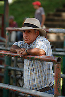 Monthly agricultural fair in the Town of Tamesis July 10, 2012.  Photo by Guillermo Betancur / VIEWpress..