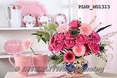 Marek, FLOWERS, BLUMEN, FLORES, photos+++++,PLMPMG1313,#f#