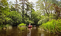 Pineland Adventures Tour with John Volpa, September 7, 2015  / Batsto River and Pinelands Environment / Photo By Bob Laramie