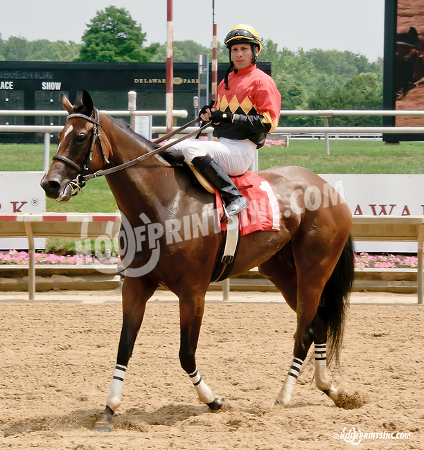 See What Happens winning at Delaware Park racetrack on 7/2/14