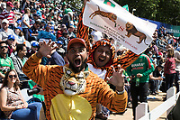 The fans dressed up for the occasion during England vs Bangladesh, ICC World Cup Cricket at Sophia Gardens Cardiff on 8th June 2019