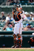 Baltimore Orioles catcher Taylor Teagarden #31 during a Spring Training game against the New York Mets at Ed Smith Stadium on March 30, 2013 in Sarasota, Florida.  (Mike Janes/Four Seam Images)