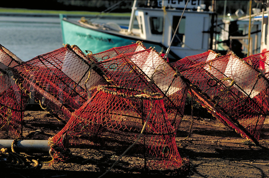 crab traps. Maine, coastal.
