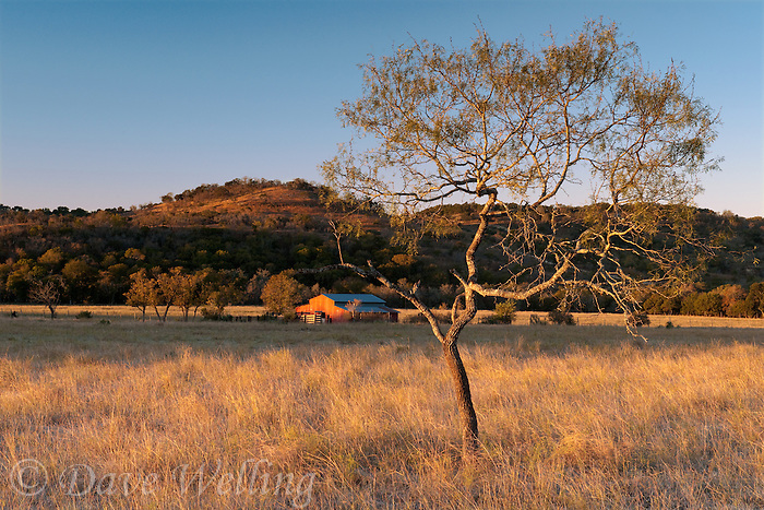 789250137 sunrise lights up a red barn on the laurels hill country ranch owned by dave and myrna langford in central texas united states