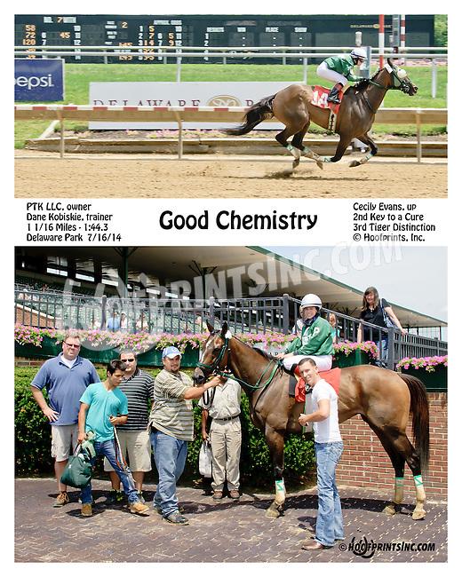 Good Chemistry winning at Delaware Park on 7/16/14