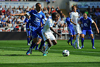 Saturday 22 September 2012 <br /> Pictured: Nathan Dyer<br /> Barclays Premiership, Swansea City v Everton at the Liberty Stadium, south Wales.
