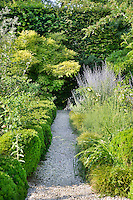 A well-stocked, lush garden with a gravel path leading through the plants on either side. The various flowers and shrubs, provide a contrasting variety of shapes, textures and greens.