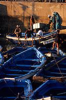 Afrique/Afrique du Nord/Maghreb/Maroc/Essaouira : Le port de pêche, retour des pêcheurs