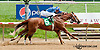 Bet the Power winning at Delaware Park on 7/24/13