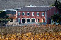 La Clape. Languedoc. Domaine Gerard Bertrand, Chateau l'Hospitalet. The vineyard. France. Europe.