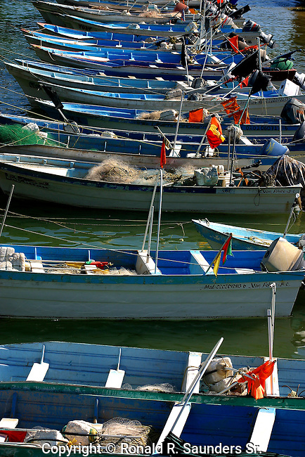 """A ROW of PANGAS<br /> The Panga, a small water craft, is the Central American/Mexican version of a skiff. The term<br />  """"Panga"""" was used historically for any small boat other than dugout canoes. Today it usually refers to an open """"semi-dory"""" type skiff, with strongly rising sheer and of comparatively narrow beam...Pangas form the backbone of the small-scale fishing effort in Mexico, Central America and much of the Caribbean. Panga-design boats have become popular fishing and workboats in many parts of the developing world."""