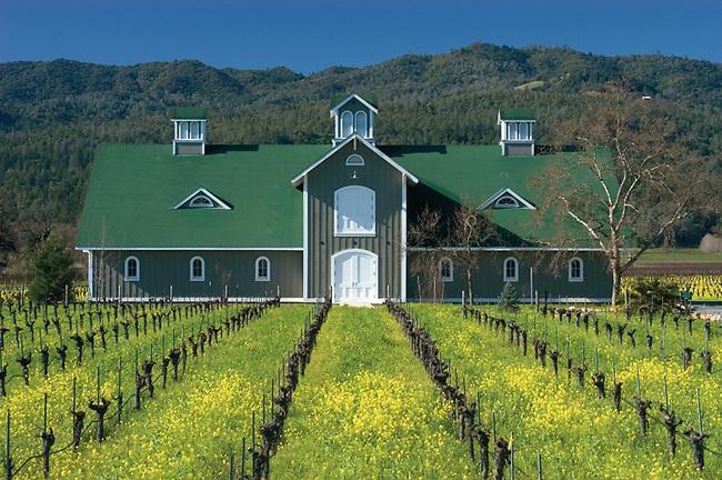 Corison Winery, St. Helena, CA