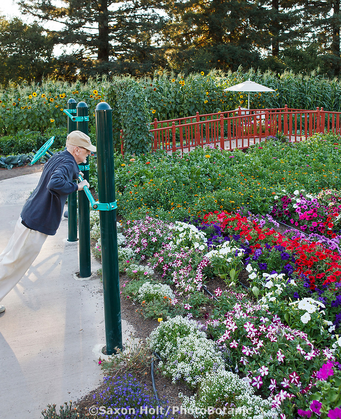 Bob, elderly resident exercising in the Community Garden at Healdsburg Senior Living Center